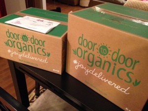 DTD boxes