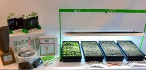 Veggie U set up